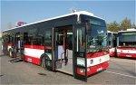 autobusy_1.JPG