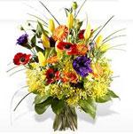 kvetiny.jpg